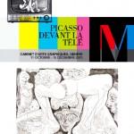 2013-Picasso-dvt-tv-expo-gde