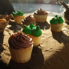 Des cupcakes, un peu, beaucoup, à la folie…