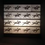 Travaux de Marey © Musée olympique