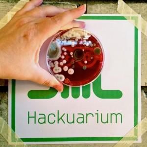 CC Hackuarium