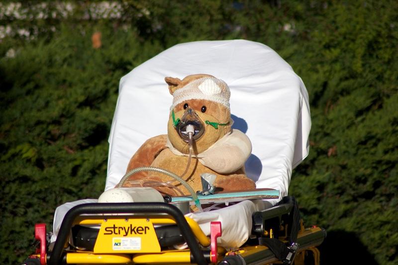 Prise en charge d'un ours accidenté. Photo prise sur le site de l'Hôpital des nounours de Lausanne