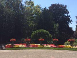 Les fleurs colorent le parc.