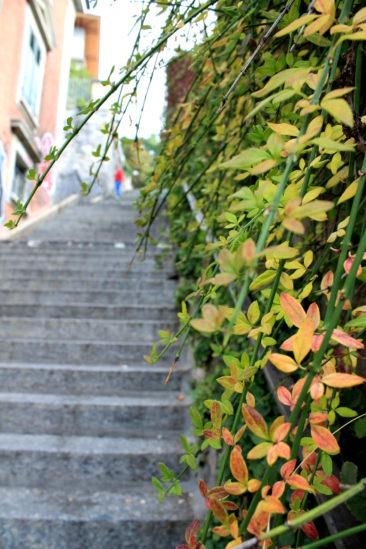 Escaliers de la Barre à l'automne