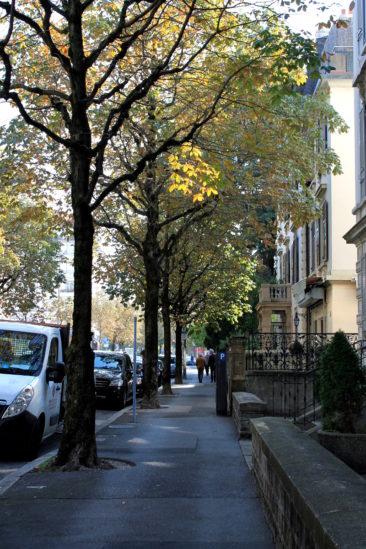 Avenue de Grancy
