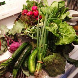 Manger mieux à Lausanne : les paniers de légumes
