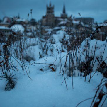 Un regard sur Lausanne : Cathédrale