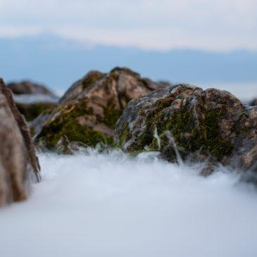 Un regard sur Lausanne : L'AMMRD