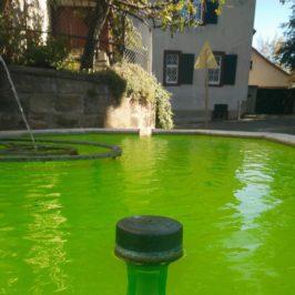 La Louve, Le Flon, le réseau : Fontaines à boire et Journée Mondiale de l'Eau