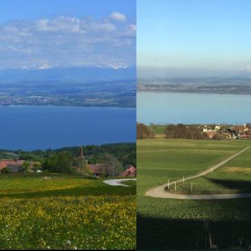 De Provence à Lausanne : billet d'une campagnarde qui ne se laissera jamais totalement gagner par la grande ville