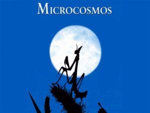 Un film franco-suisse sur le monde des insectes.