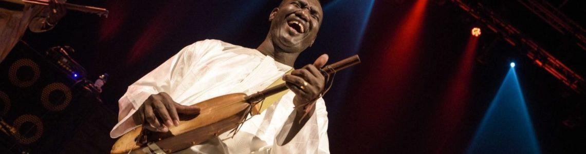Bassekou Kouyaté, saint patron du n'goni